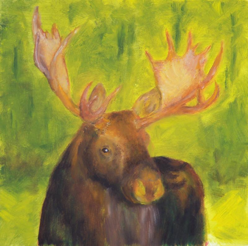 Moose Watching  5x5 oil  $85